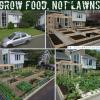 本格的な家庭菜園は難しくない。野菜を育ててコミュニティをつなぐプロジェクトを2つ紹介