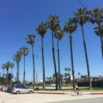 5月のロサンゼルスは日差しがまぶしい! もうすぐ真夏の始まり
