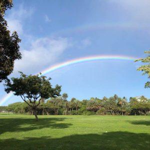 hawaiirainbow